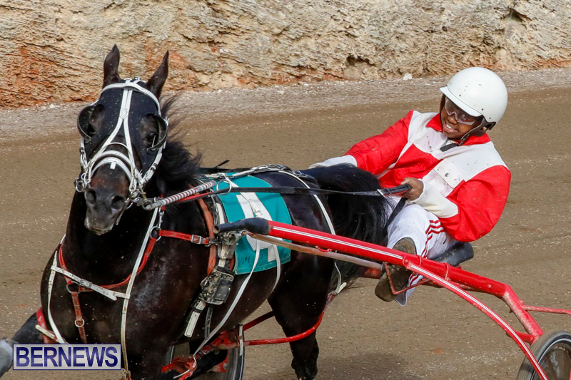 Harness-Pony-Racing-Bermuda-December-26-2017-8435