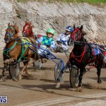 Harness Pony Racing Bermuda, December 26 2017-8438