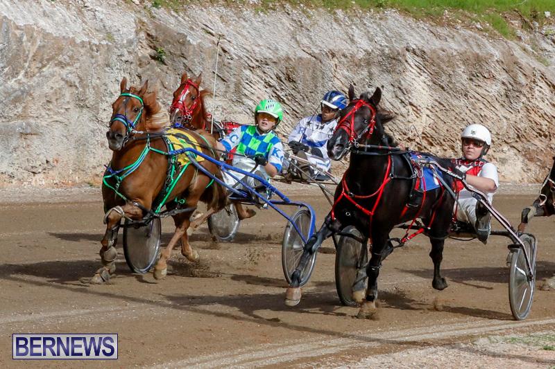 Harness-Pony-Racing-Bermuda-December-26-2017-8438