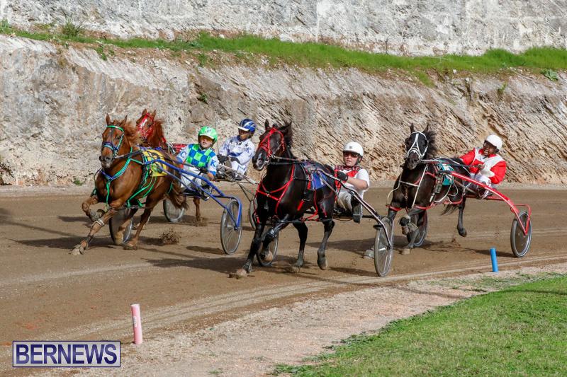 Harness-Pony-Racing-Bermuda-December-26-2017-8439