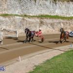 Harness Pony Racing Bermuda, December 26 2017-8474