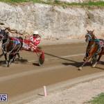 Harness Pony Racing Bermuda, December 26 2017-8475