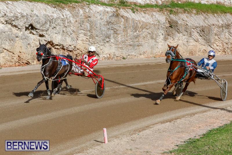 Harness-Pony-Racing-Bermuda-December-26-2017-8475