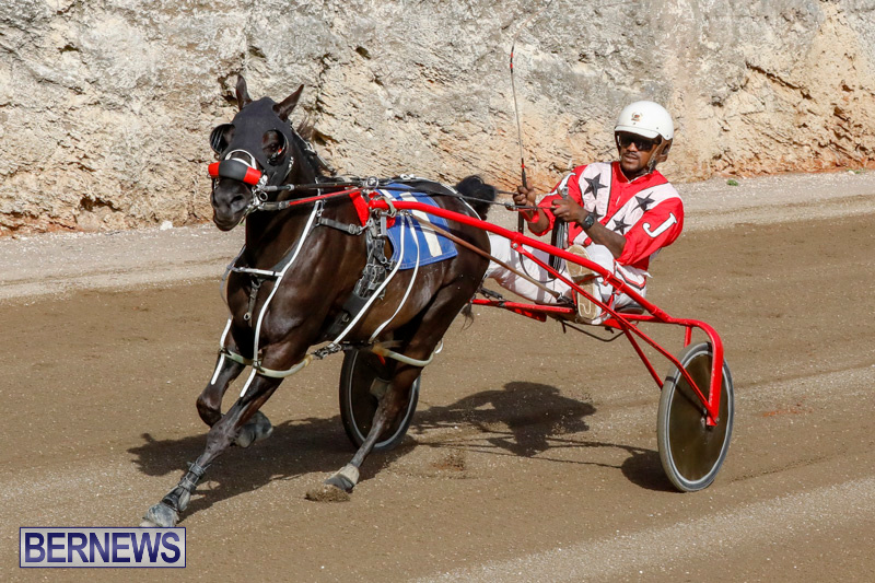 Harness-Pony-Racing-Bermuda-December-26-2017-8477