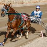 Harness Pony Racing Bermuda, December 26 2017-8479