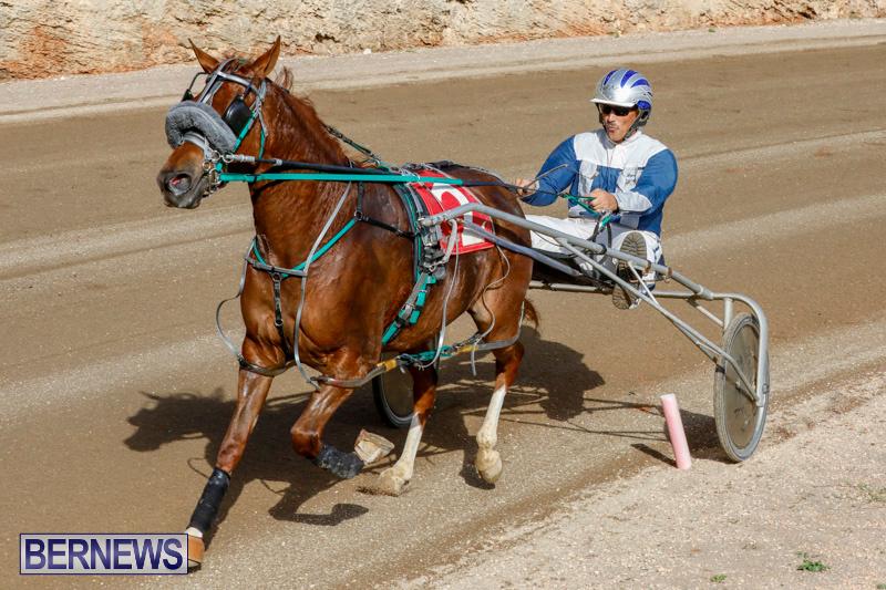 Harness-Pony-Racing-Bermuda-December-26-2017-8479