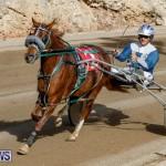 Harness Pony Racing Bermuda, December 26 2017-8489