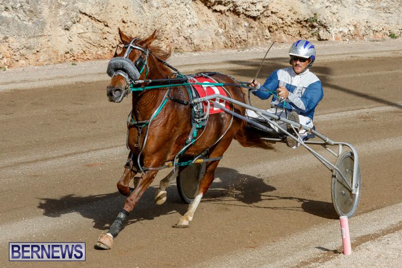 Harness-Pony-Racing-Bermuda-December-26-2017-8489
