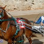 Harness Pony Racing Bermuda, December 26 2017-8491