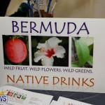Home-Grown Alternatives Show Bermuda, December 2 2017_2982