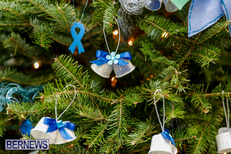 Sylvia-Richardson-Care-Facility-Christmas-Decorations-Bermuda-December-20-2017-6513