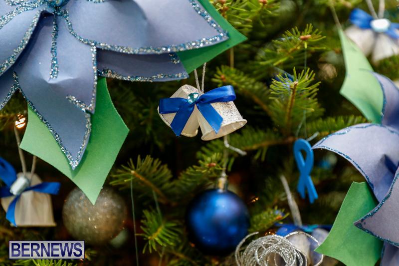 Sylvia-Richardson-Care-Facility-Christmas-Decorations-Bermuda-December-20-2017-6514