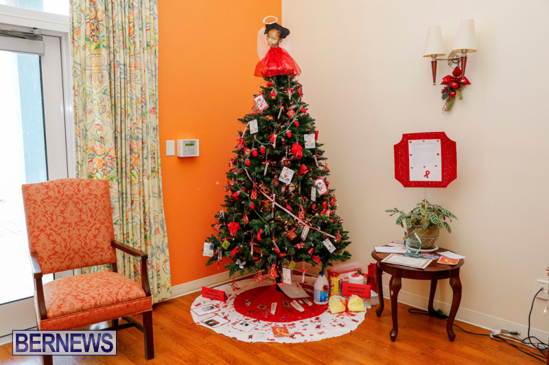 Sylvia-Richardson-Care-Facility-Christmas-Decorations-Bermuda-December-20-2017-6555