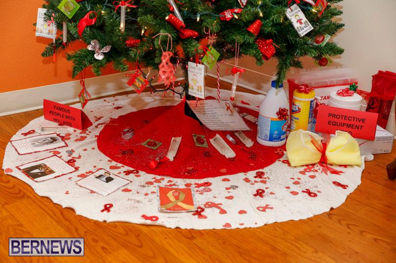 Sylvia-Richardson-Care-Facility-Christmas-Decorations-Bermuda-December-20-2017-6562