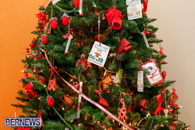 Sylvia-Richardson-Care-Facility-Christmas-Decorations-Bermuda-December-20-2017-6564