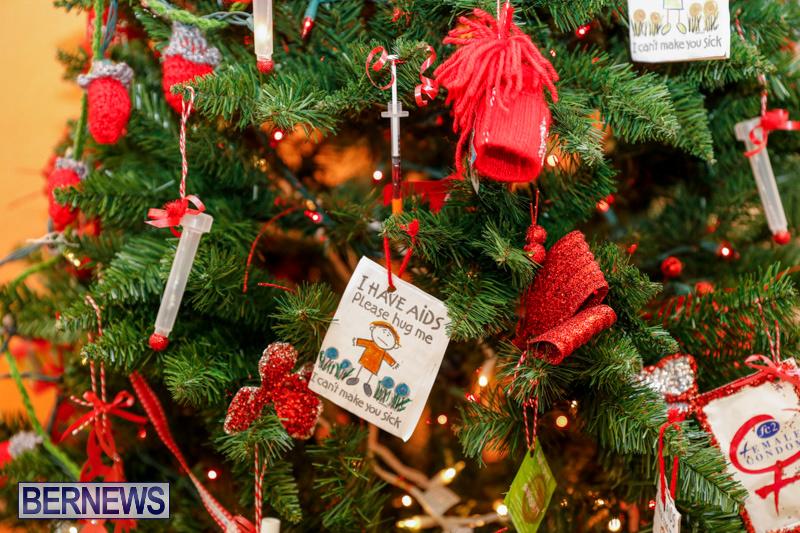 Sylvia-Richardson-Care-Facility-Christmas-Decorations-Bermuda-December-20-2017-6565