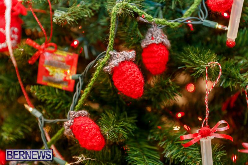 Sylvia-Richardson-Care-Facility-Christmas-Decorations-Bermuda-December-20-2017-6568