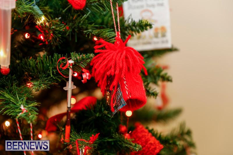 Sylvia-Richardson-Care-Facility-Christmas-Decorations-Bermuda-December-20-2017-6570