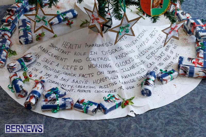 Sylvia-Richardson-Care-Facility-Christmas-Decorations-Bermuda-December-20-2017-6594