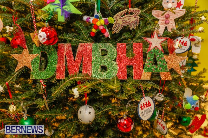 dmbha Charity-Christmas-Tree-Event-Washington-Mall-Bermuda-December-11-2017-4463
