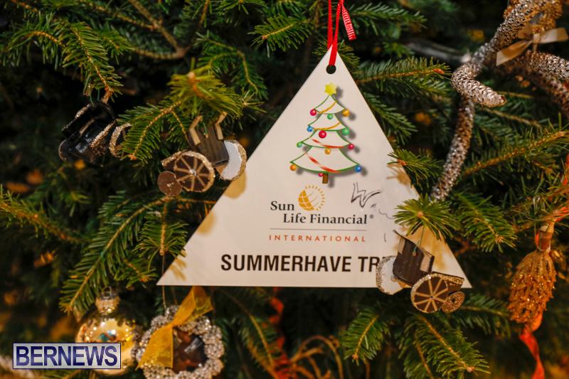 summerhaven Charity-Christmas-Tree-Event-Washington-Mall-Bermuda-December-11-2017-4478