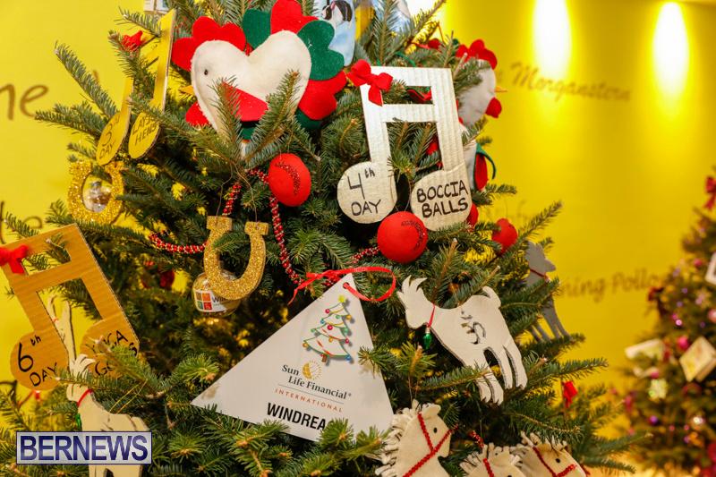 windreach Charity-Christmas-Tree-Event-Washington-Mall-Bermuda-December-11-2017-4475