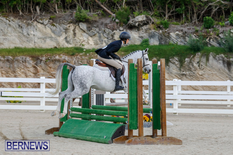 Auto-Solutions-RES-Spring-Show-Bermuda-January-20-2018-2459