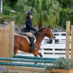 Auto Solutions RES Spring Show Bermuda, January 20 2018-2494