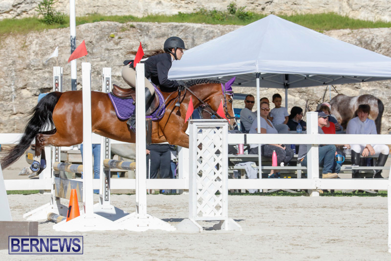 Auto-Solutions-RES-Spring-Show-Bermuda-January-21-2018-4627
