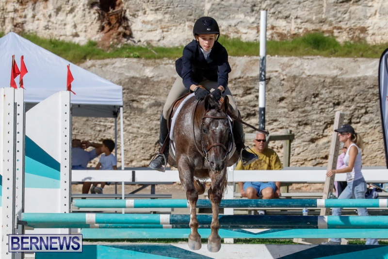 Auto-Solutions-RES-Spring-Show-Bermuda-January-21-2018-4834