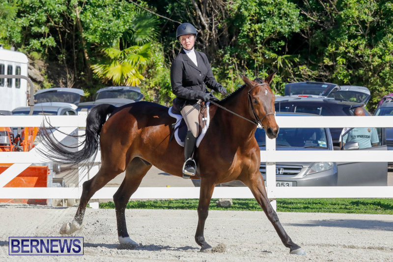 Auto-Solutions-RES-Spring-Show-Bermuda-January-21-2018-5015