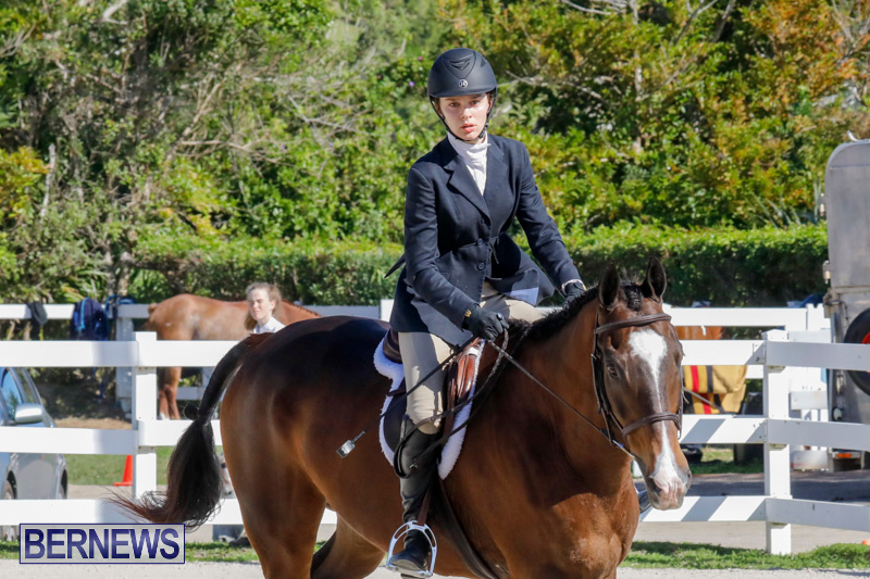 Auto-Solutions-RES-Spring-Show-Bermuda-January-21-2018-5023