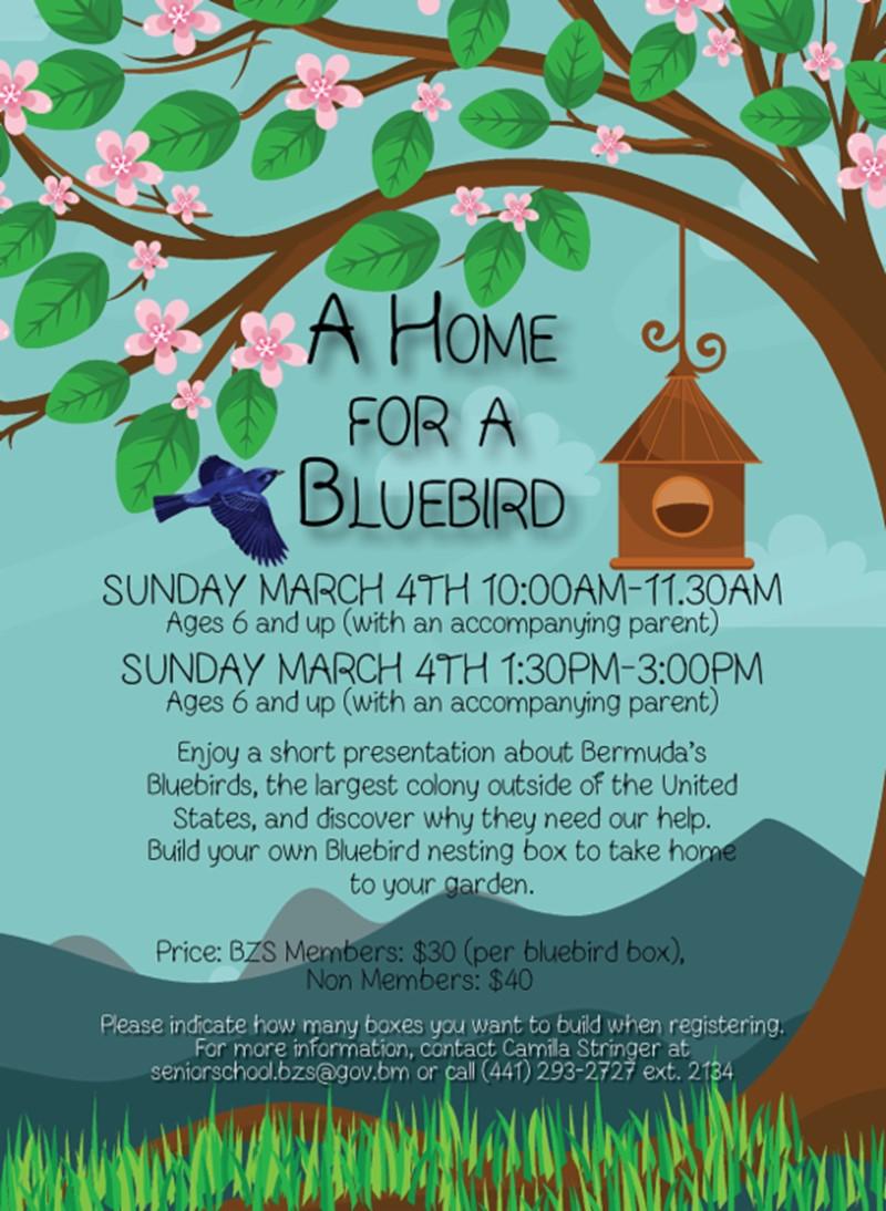 BZS-A Home For A Bluebird