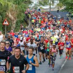 Bermuda Marathon Weekend 10K Race, January 13 2018-3861