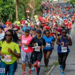 Bermuda Marathon Weekend 10K Race, January 13 2018-3878
