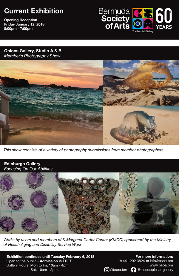 Bermuda Society of Art January 2018 (3)