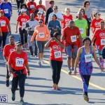 Butterfield & Vallis 5K Race Bermuda, January 21 2018-4026