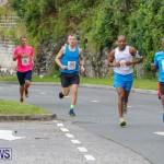 Goslings to Fairmont Southampton Road Race Bermuda, January 7 2018-2336
