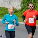 Goslings to Fairmont Southampton Road Race Bermuda, January 7 2018-2411