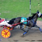 Harness Pony Racing Bermuda Jan 17 2018 (10)
