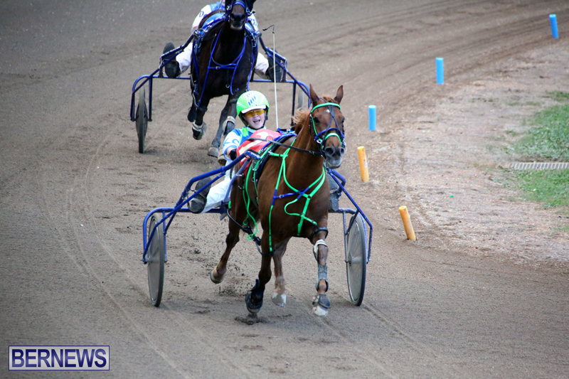 Harness-Pony-Racing-Bermuda-Jan-17-2018-17