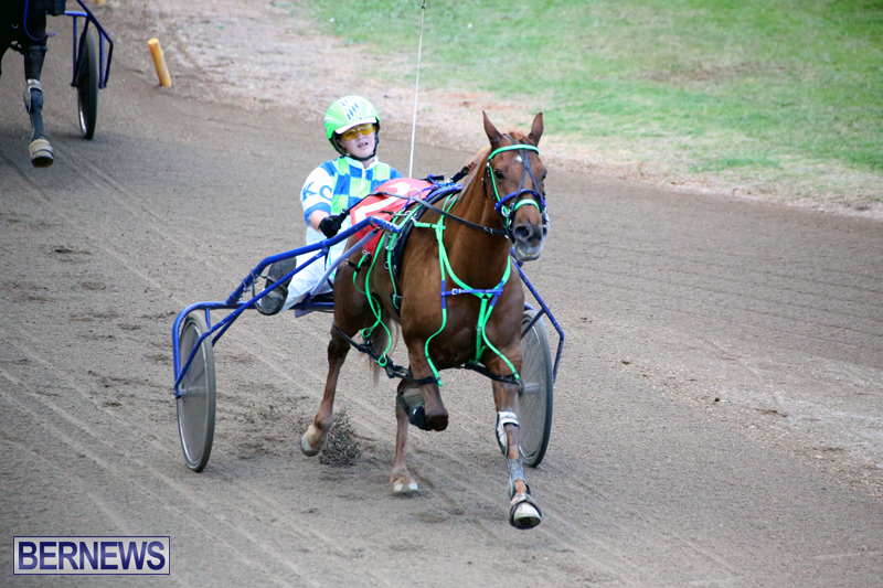 Harness-Pony-Racing-Bermuda-Jan-17-2018-18