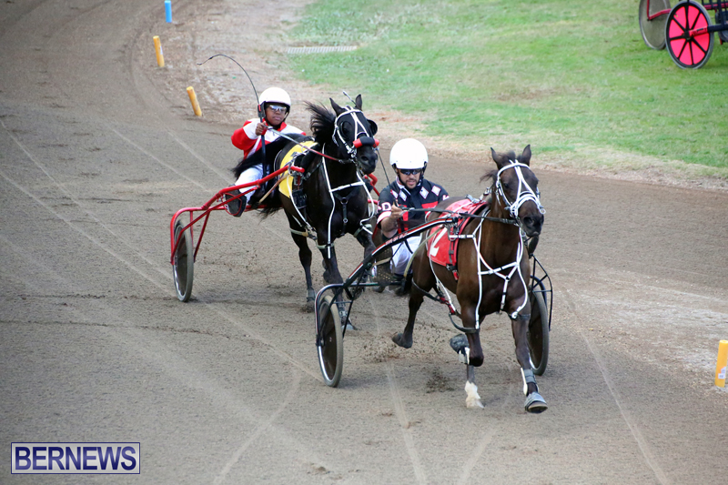 Harness-Pony-Racing-Bermuda-Jan-17-2018-3
