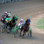 Harness Pony Racing Bermuda Jan 17 2018 (5)