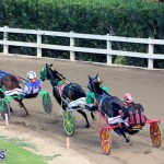 Harness Pony Racing Bermuda Jan 17 2018 (7)