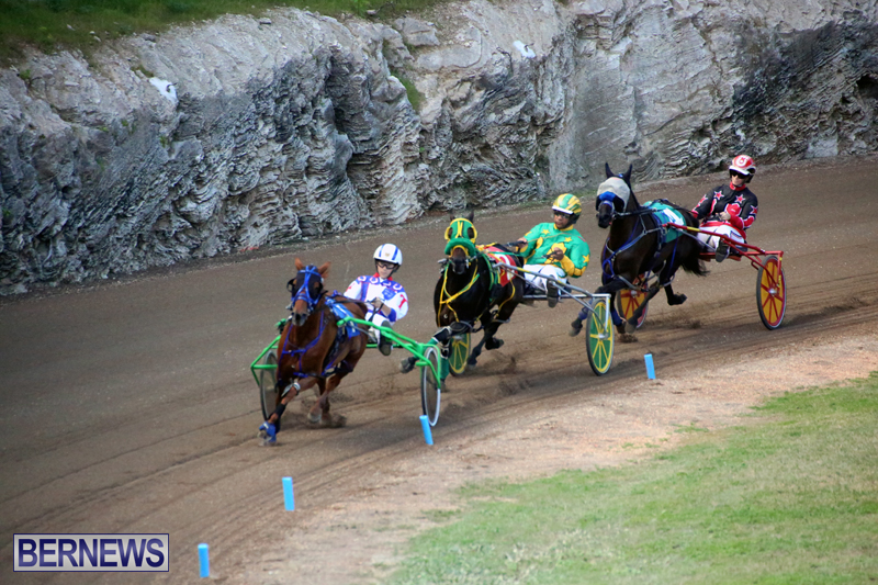 Harness-Pony-Racing-Bermuda-Jan-17-2018-8