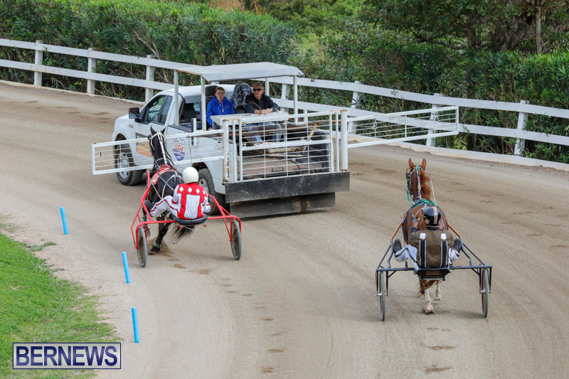 Harness-Pony-Racing-Bermuda-January-28-2018-6303