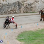 Harness Pony Racing Bermuda, January 28 2018-6308