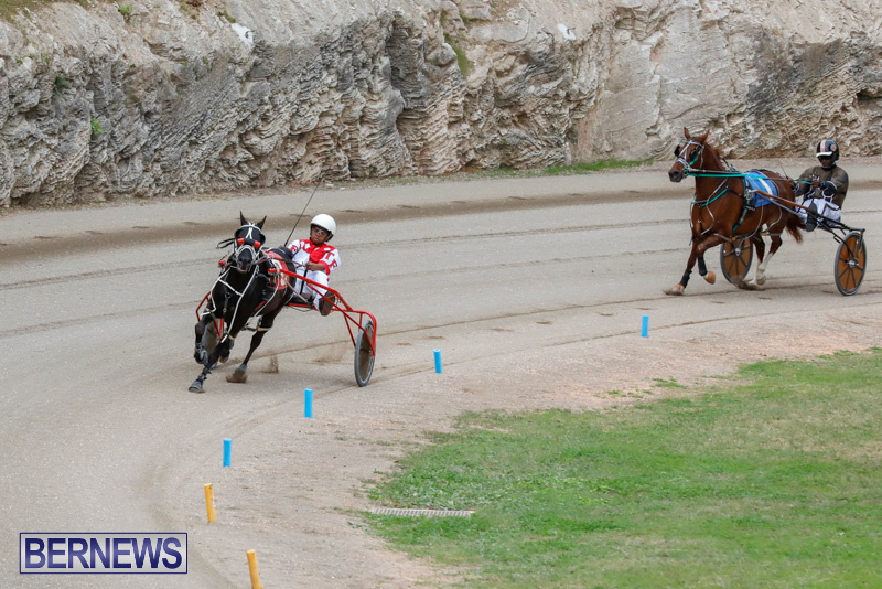 Harness-Pony-Racing-Bermuda-January-28-2018-6308