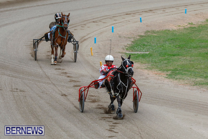 Harness-Pony-Racing-Bermuda-January-28-2018-6311